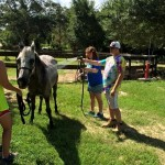Kids in Motion at Ranch Critters